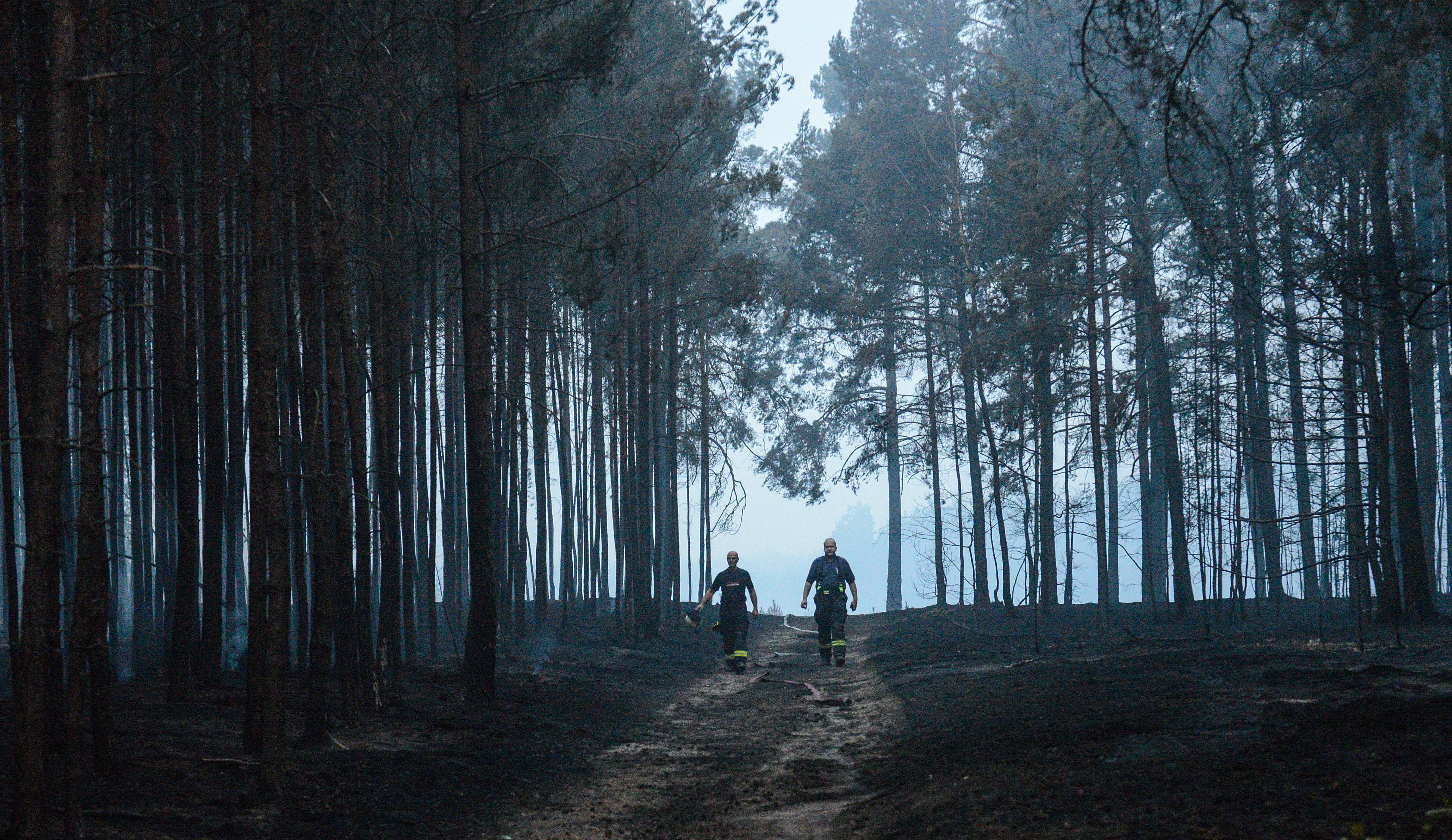 Nach Feuer in Brandenburg: Förster spricht düstere Vorahnung