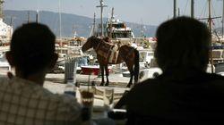 Η Περιφέρεια Αττικής ζητά να κηρυχθεί η Ύδρα σε κατάσταση εκτάκτου