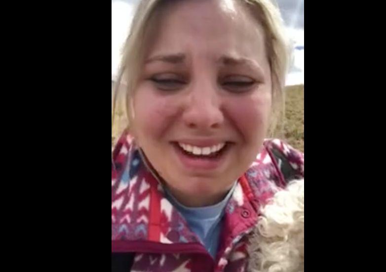 Frau verliert Hund bei Autounfall – plötzlich steht er vor