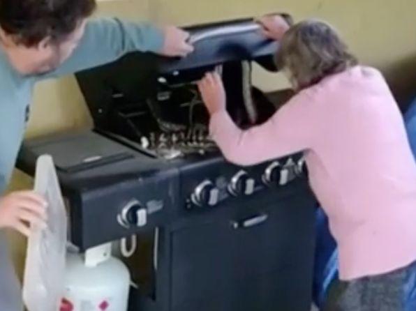 Familie findet im Grill zwei Pythons – die Großmutter zögert nicht