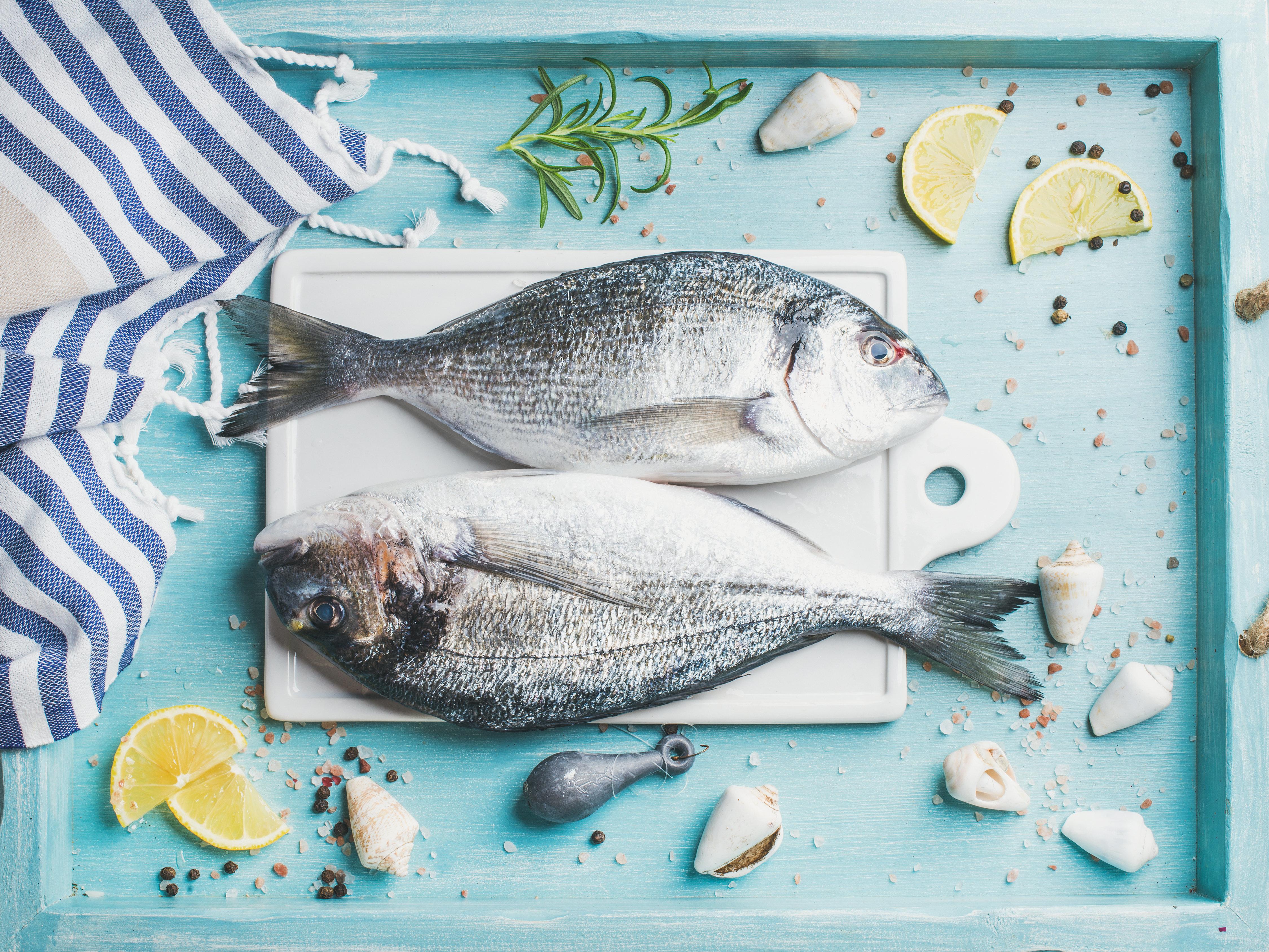 Καλοφαγάδες οι αρχαίοι Έλληνες: Ποια ψάρια προτιμούσαν και οι αστρονομικές τιμές που τα αγόραζαν