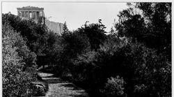 Δημήτρης Πικιώνης: Αναζητώντας το μέτρο και την