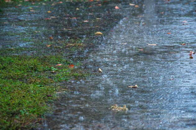 29일 오전까지 중부지방에 시간당 40mm 폭우가