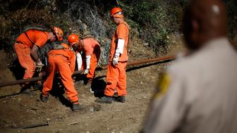 Prison inmates lay water pipe on a work project outside Oak Glen Conservation Fire Camp #35 in Yucaipa, California November 6, 2014. Thousands of convicted felons form the backbone of California's wildfire protection force under a unique and little-known prison labor program. But California may soon find it harder to recruit new inmate firefighters after a ballot measure was passed last month to ease prison crowding by reducing felony sentences to misdemeanor jail terms for most non-violent, low-level offenses, including many drug crimes. That measure will likely diminish the very segment of the inmate population that the California Department of Forestry and Fire Protection, or Cal Fire, draws upon to fill its wildland firefighting crews. Picture taken November 6. To match Feature USA-FIREFIGHTERS/CALIFORNIA      REUTERS/Lucy Nicholson   (UNITED STATES - Tags: CRIME LAW SOCIETY)