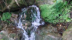 Installation d'une commission de contrôle des eaux de sources à Blida et