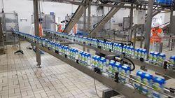 Hygiène, valeur nutritive du lait, excédent dû au boycott… dans les coulisses de Centrale Danone