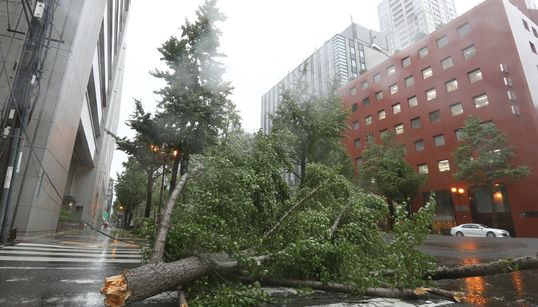 Typhoon Jebi: Japan Lashed By Strongest Storm Since
