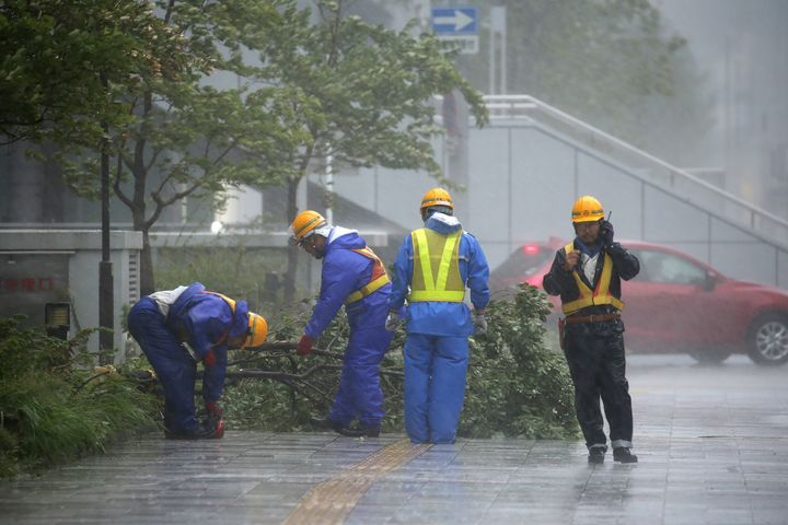 Local government wokers remove a fallen tree along a pavement.
