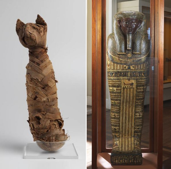 A mummified Egyptian cat and a sarcophagus that the museum featured.
