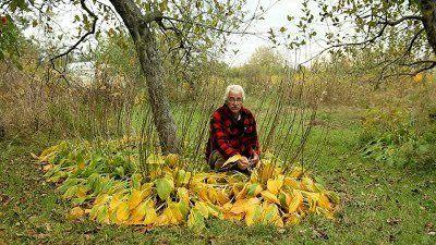 Stefan Sobkowiak on his permaculture farm in