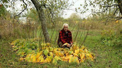 Stefan Sobkowiak on his permaculture farm in Quebec.