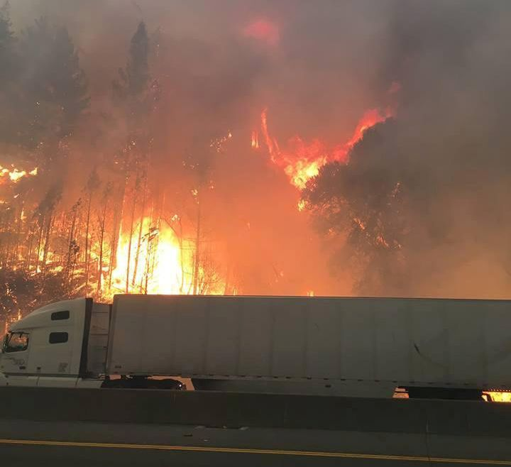 Flames engulfed trees along Interstate 5 north of Redding, California on Wednesday.