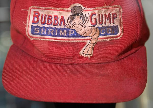 "A detail of a hat worn by Tom Hanks in the 1994 film ""Forrest Gump."""