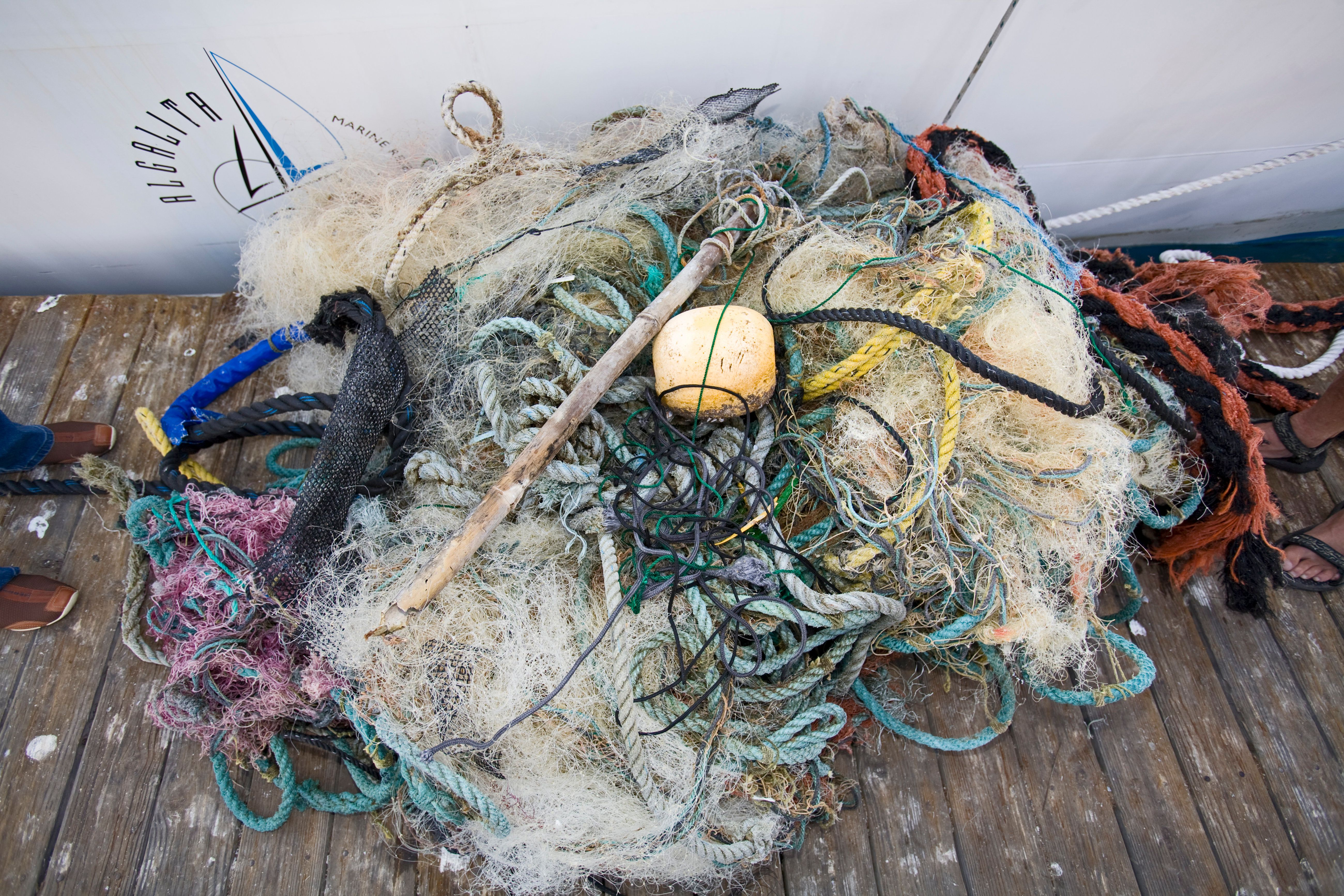 Trash and assorted garbage collected form the North Pacific Gyre. The ORV Alguita returns to Long beach after four months at sea sampling the waters of the great Pacific garbage patch' in the North Pacific Subtropical Gyre (NPSG). The Algalita Marine Research Foundation has been studying and educating the public about the effects of oceanic micro-plastic pollution on the ocean's ecosystem and marine life for over ten years. Long Beach, California, USA. (Photo by: Citizen of the Planet/Education Images/UIG via Getty Images)