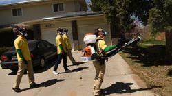 Reuters: Ο ιός του Δυτικού Νείλου εξαπλώνεται στην Ελλάδα - 21