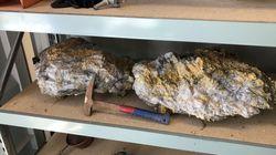 Μεγάλοι βράχοι με χρυσό, αξίας εκατ. δολαρίων, βρέθηκαν στην Αυστραλία