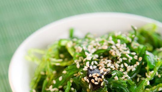 Seetang: Das Superfood, das gegen den Klimawandel helfen