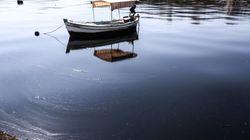Πετρελαιοκηλίδα Σαρωνικού: επέτειος αγωνίας για το