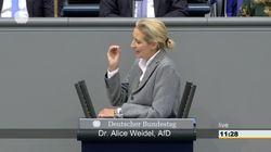 Heikle Wortwahl im Bundestag: Alice Weidel wirft CDU