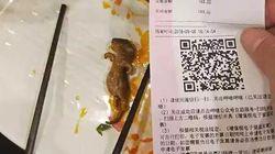 Schwangere Frau findet Ratte in ihrem Essen – Restaurant bietet an, für ihre Abtreibung zu