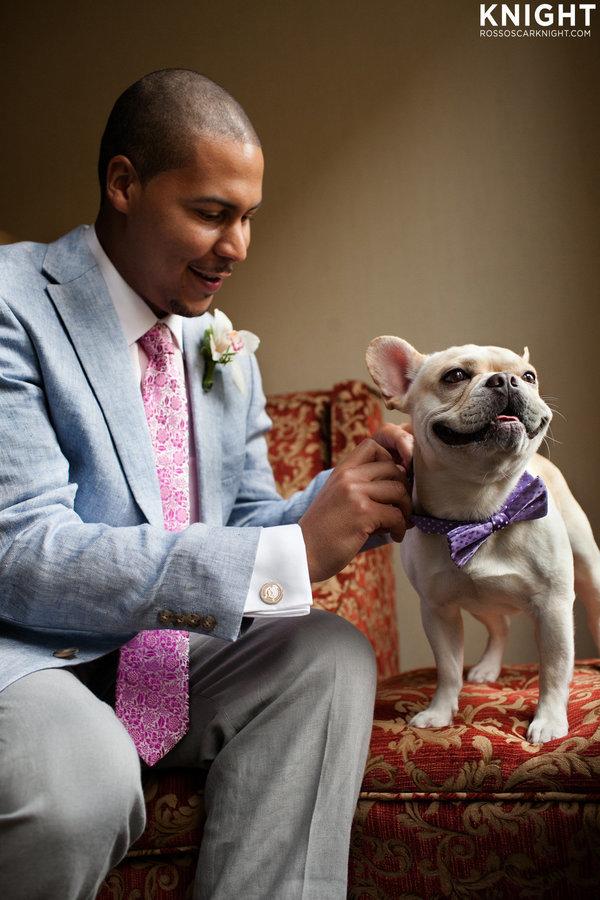 Hochzeits-Fotos: 32 Hunde, die ihren Besitzern beim Ja-Wort zur Seite