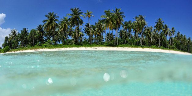 Palm-fringed tropical beach with white sand and crystal clear blue water in the Mentawai Islands, shot from the water with fisheye under/over perspective.