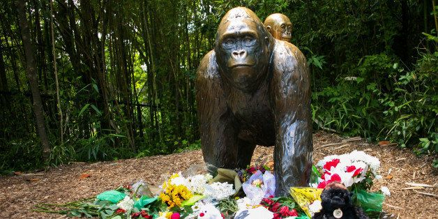 Flowers lay around a bronze statue of a gorilla and her baby outside the Cincinnati Zoo's Gorilla World exhibit, two days after a boy tumbled into its moat and officials were forced to kill Harambe, a Western lowland gorilla, in Cincinnati, Ohio, U.S. May 30, 2016.  REUTERS/William Philpott