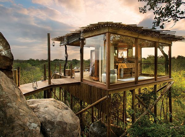 "Nestled among the treetops, amid acres of African bush and roaming wildlife, sits <a href=""http://www.lionsands.com/our-treeh"