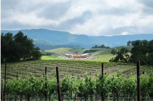 The New Napa: Paso Robles | HuffPost Life