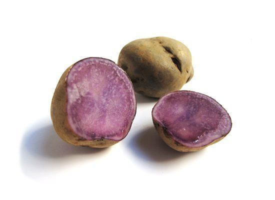 Adirondack Blue potatoes have purple skin and bright blue-purple flesh that fades to a shade of blue when mashed, and deepens