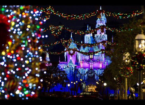 The Magic Of Disneyland At Christmas Photos Huffpost Life