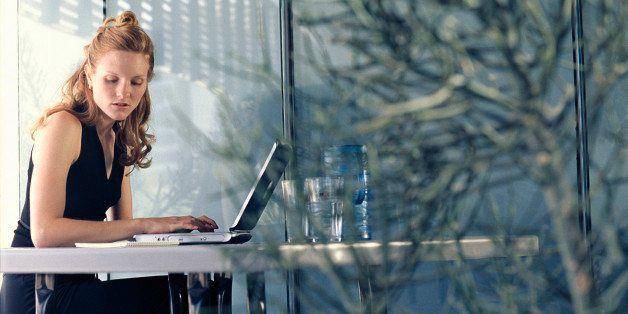 Professional woman using laptop computer