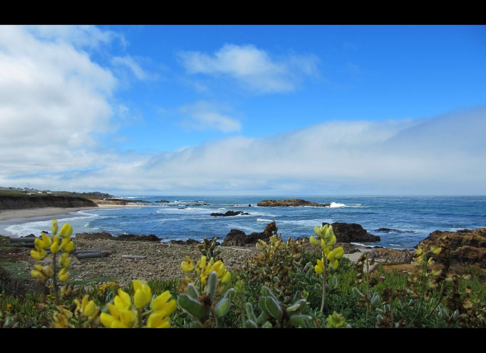 <em>There are no bad words for the coast today. --Rilo Kiley</em>  No matter how often I drive the Pacific Coast Highway, s