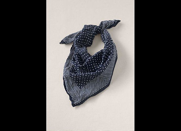 "<a href=""http://canvas.landsend.com/pp/womens-silk-polka-dot-scarf~235184_-1.html?cm_mmc=Froogle-_-null-_-Canvas-_-data_feed"""
