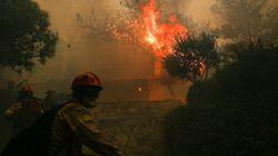 Αποκλειστικό θέμαHuffPostGreece: Από καλώδια της ΔΕΗ η φωτιά στην Κινέτα