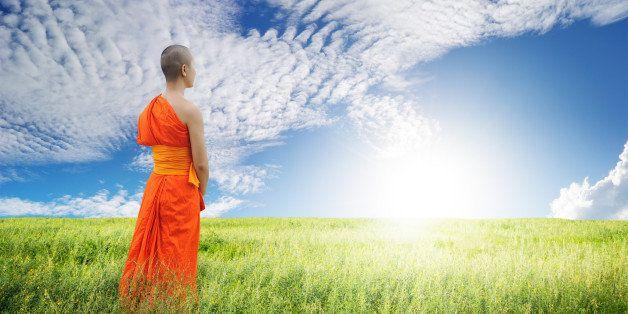 monk walk in grass fields and...