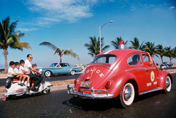 Still, a vintage bug from the 1950s can sell for as much $65,000 while models with a split window on the back can go for $75,