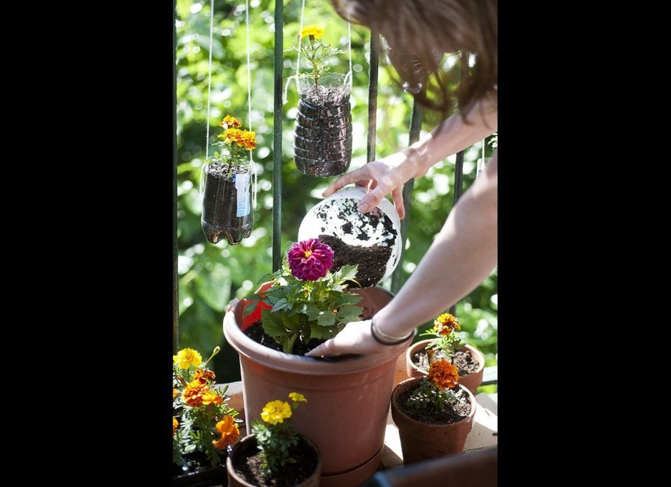 The recycled pots are filled to the brim with potting soil.