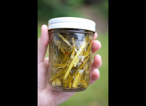 "<strong>Get the <a href=""http://notwithoutsalt.com/2009/06/18/garlic-scapes/"" target=""_hplink"">Pickled Garlic Scapes recipe</"