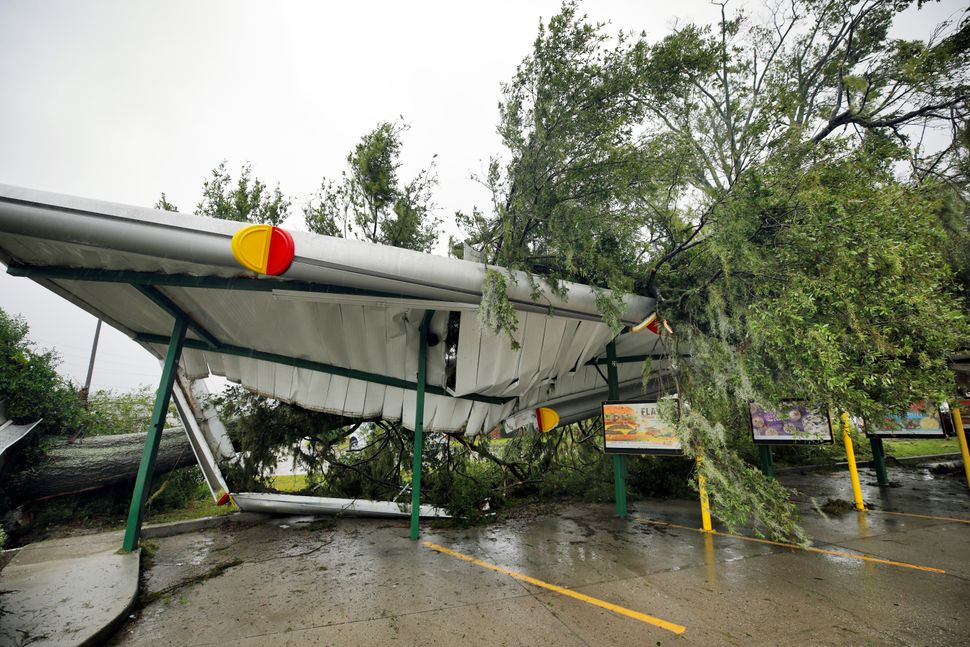 A fallen tree lies atop the crushed roof of a fast food restaurant after the arrival of Hurricane Florence in Wilmington, Nor