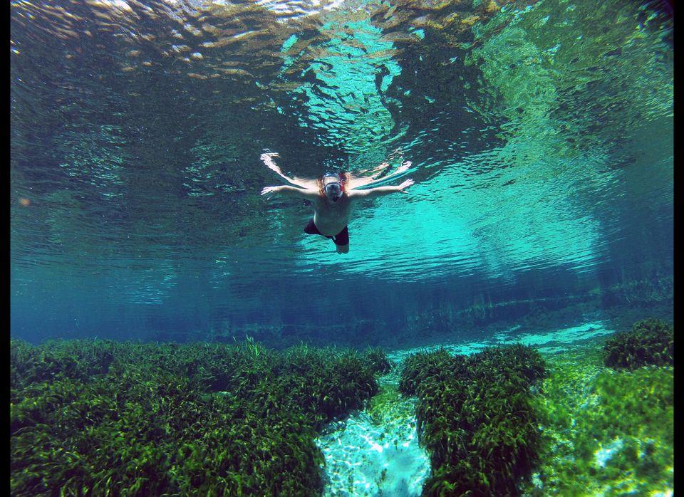 "<strong>Where worry drifts away:</strong> <a href=""http://www.visitflorida.com/springs"" target=""_hplink"">Alexander Springs Re"