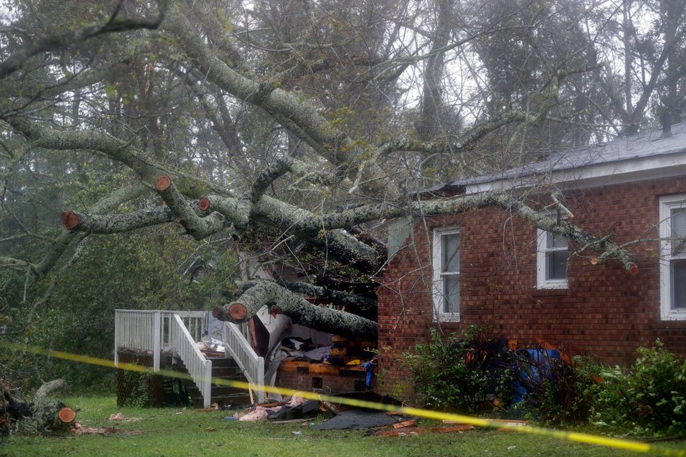 A fallen tree is shown after it crashed through the home where a woman and her baby were killed in Wilmington, North Carolina
