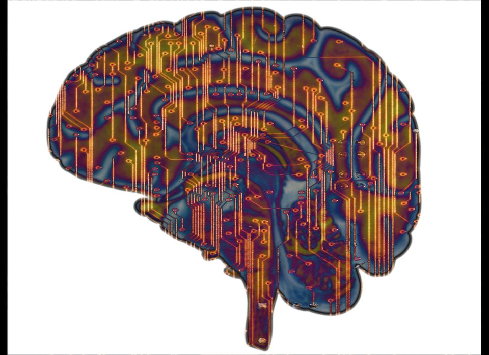 """A <em>Journal of Alzheimer's Disease</em> study published earlier this year showed that <a href=""""http://iospress.metapress.co"""