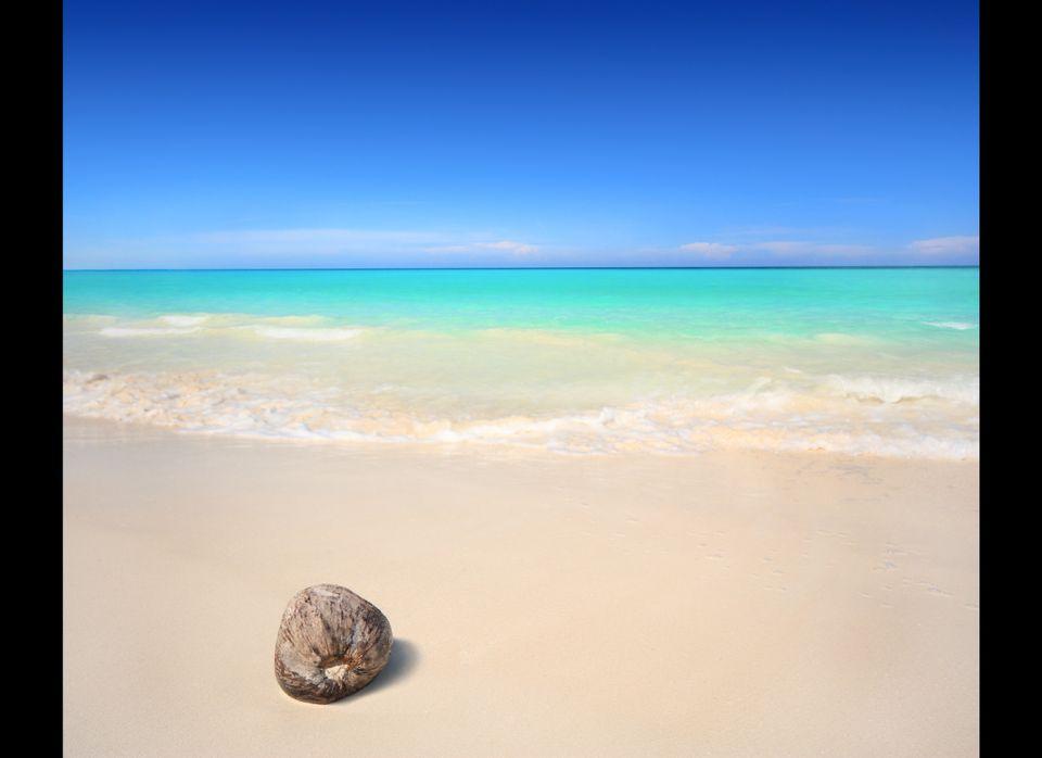 "<a href=""http://www.nresortnude.com/NResortWeddings.htm"" target=""_hplink"">The N Resort in Jamaica</a> is an all-nude, adults-"