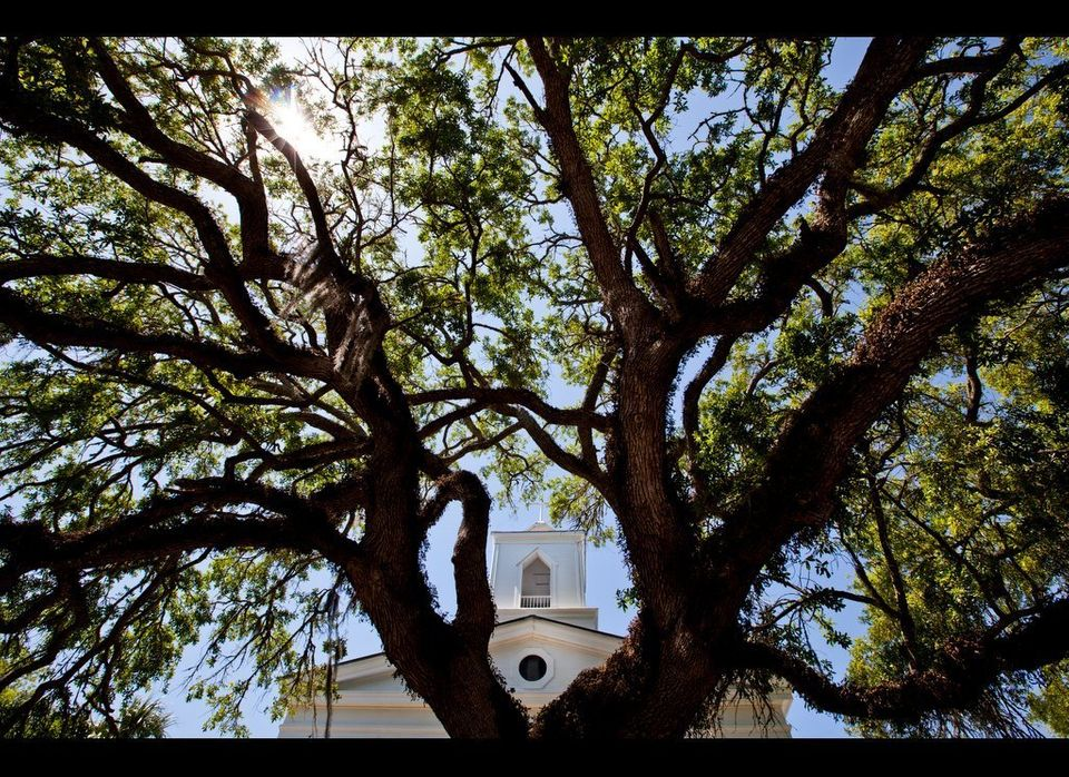 "Beneath spreading Live Oak branches, Trinity Episcopal Church has served <a href=""http://www.visitflorida.com/Apalachicola"" t"