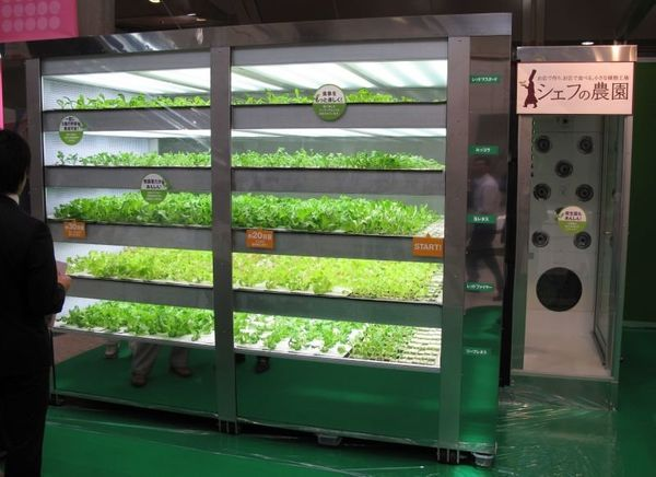 """If you've ever wondered if lettuce can be grown without sunlight, the answer appears to be yes. Japan's """"portable garden"""" cal"""
