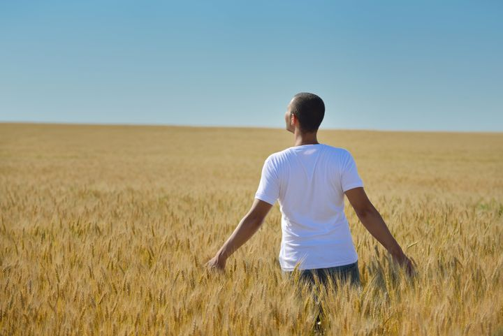 young man in wheat field...
