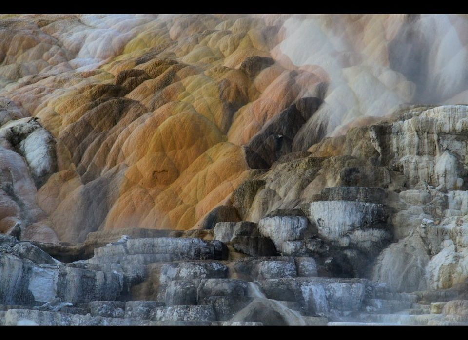 Mammoth Hot Springs, one of the many fascinating geological features of Yellowstone National Park. (Photo by Ed Felker)