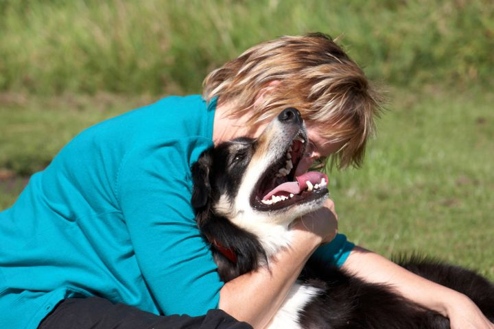 a border collie and the owner...