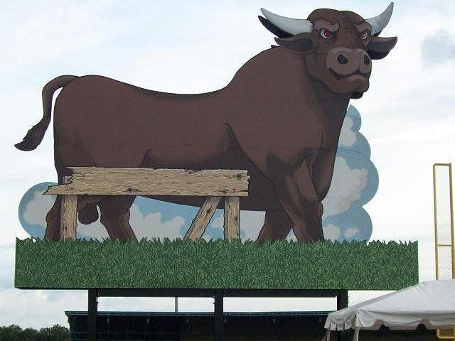 Description Durham Bulls Athletic Park, Durham, North Carolina   Source Transferred from http ... title File%3ADurham_Bull_fl